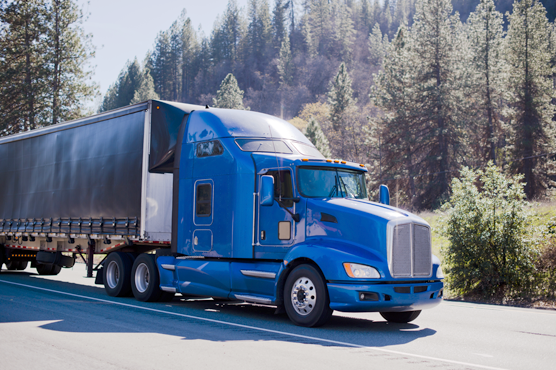 A semi-truck with a blue cab and black trailer is driving down a road with pine trees in the background.